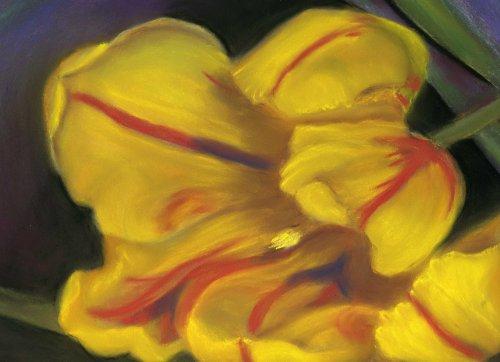Tulip Time ©Linn Eldred