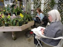Nature Artists' Guild of The Morton Arboretum sketching at Orchids by Hausermann
