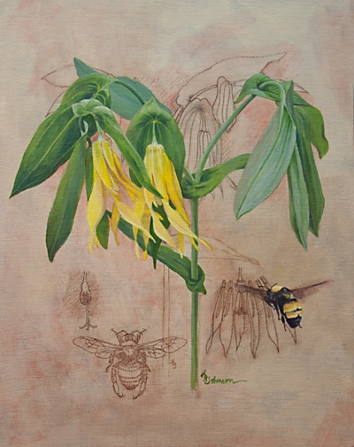"""Brought to Life-Bellwort and Bee"" © 2013 Karen A Johnson"