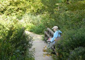 Nature Artists' Guild at Beard Garden 2012 A