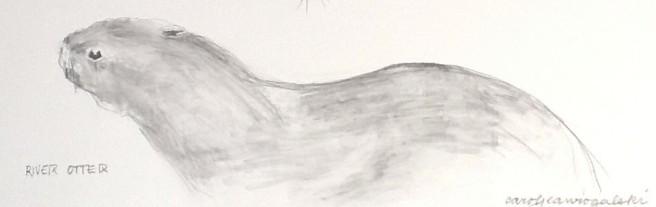 River Otter ©Carol Jean Rogalski
