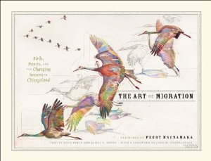 The Art of Migration by Peggy Macnamara