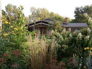 Nina Koziol's Wildwood Garden, Used with permission
