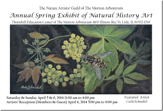 Nature Artists' Guild 2014 Spring Exhibit Postcard