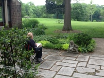 Nature Artists' Guild at Mayslake Peabody Estate 2014 6