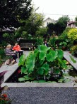 Carol Jean Rogalski and Connie Devendorf at Catherine Donovan's Garden