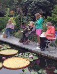 Barb Denny, Carol Jean Rogalski, Catherine Donovan and Connie Devendorf at Catherine Donovan's Garden