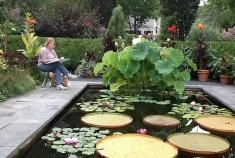 Barb Denny at Catherine Donovan's Garden