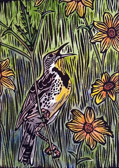 Meadowlark and Tickseed, copyright Carrie Carlson