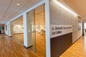 Komechak Art Gallery, Benedictine University, Lisle IL