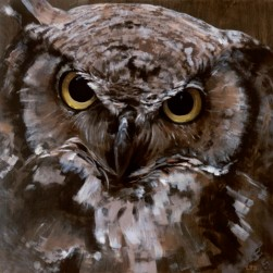 Great Horned Owl, copyright Lindsay Sandbothe