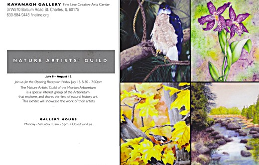 Nature Artists' Guild at Kavanagh Gallery 2016