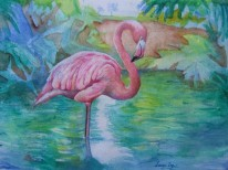 Flamingo, copyright Susan Vogel