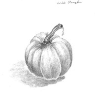 white-pumpkin-copyright-linn-eldred