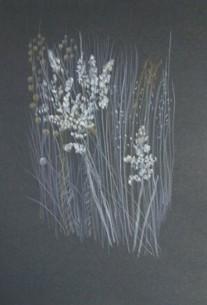 winter-prairie-copyright-carol-schaley