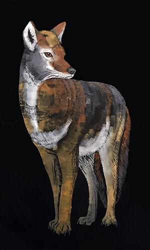 Member News | Nature Artists' Guild