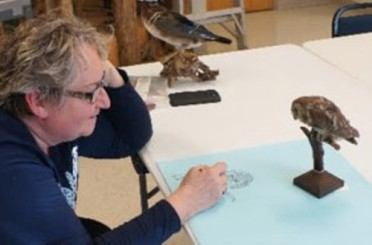 Nature Artists' Guild at Jurica-Suchy Nature Museum. Photo credit Jane Kellenberger.