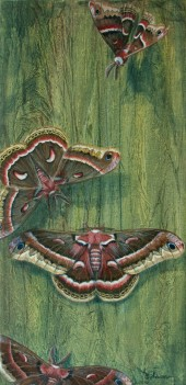 Cecropia Courtship, acrylic, © 2013 Karen A Johnson