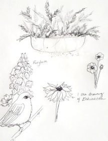 2020 Spring Nature Artists' Guild Encounter, drawing, copyright Kathi Kuchler