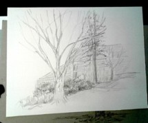 2020 Spring Nature Artists' Guild Encounter, tree pencil sketch, copyright Marlene Vitek