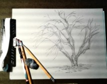 2020 Spring Nature Artists' Guild, tree pencil sketch, copyright Marlene Vitek