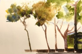 2020 Nature Artist' Guild, Trees, watercolor, copyright Carol Jean Rogalski