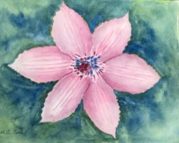 2020 Nature Artists' Guild, flower, copyright Carol Carls