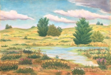 Prairie Pond, copyright Gary Chipman