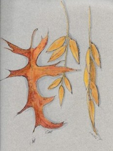Oak and Locust leaves, ink and colored pencil, copyright Marlene Vitek