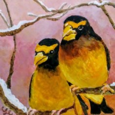 Evening Grosbeaks, acrylic, copyright Carol Cooley