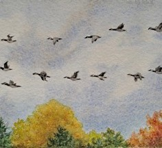 Homeward Bound, watercolor, copyright Bobbie Brown