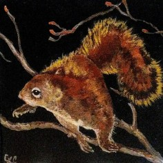 Pine Squirrel, acrylic, copyright Carol Cooley