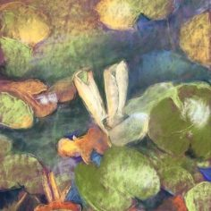 Water Lilies #3, pastel, copyright Carol Jean Rogalski