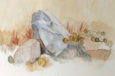 Piedra Lisa Trailhead, copyright 2021 Laverne Bohlin
